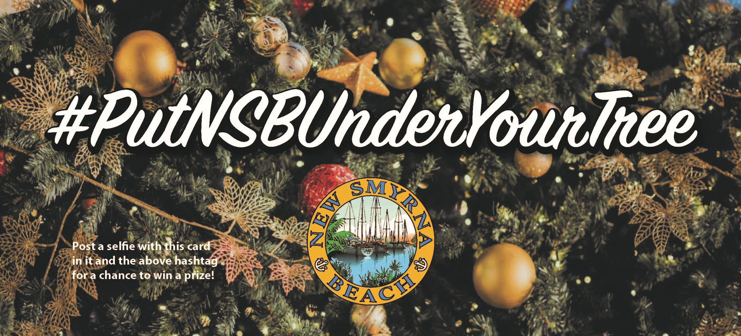 Graphic banner for #PutNSBUnderYourTree social media campaign depicting the hashtag in large white l